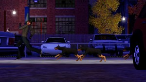 TS3-PETS-ANNOUNCE-DOG-CHASE-01