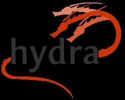 hydra_logo_h200_transparent_bg